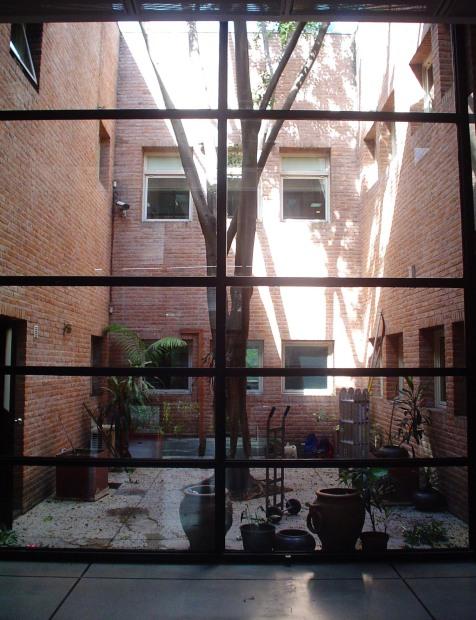 Patio original con un Ficus central